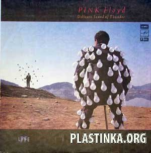 Pink Floyd - Delicate Sound of Thunber (live)