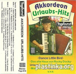The Modern Accordeon Selection - Akkordeon Urlaubs-Hits (MC Rip)